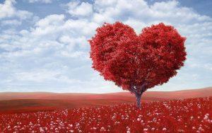 arbol-forma-corazon